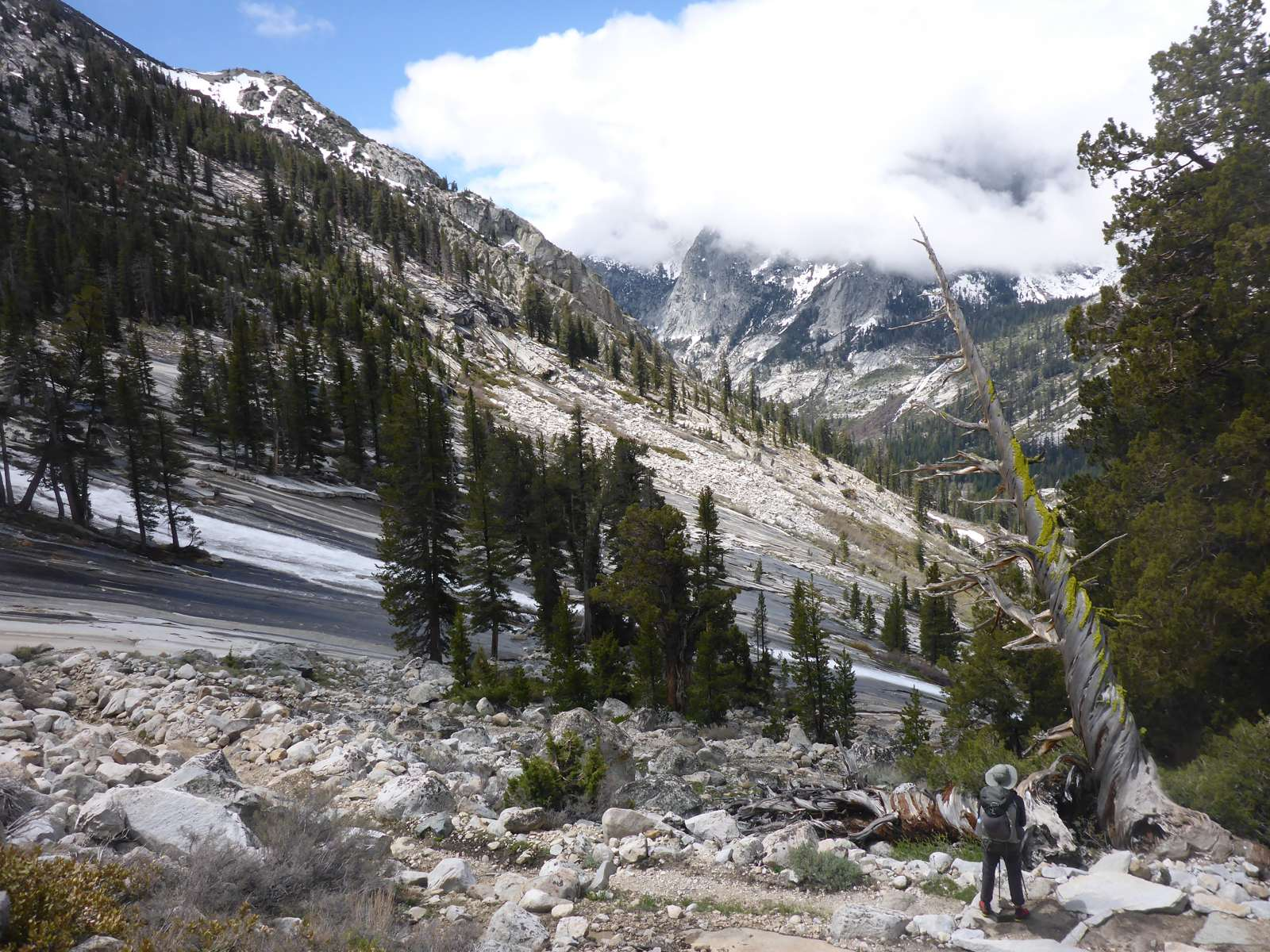 Deeper in the Sierra we explored scenic valleys with gushing rivers and beautiful forests.